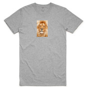 African Lion - AS Colour - Plus Tee